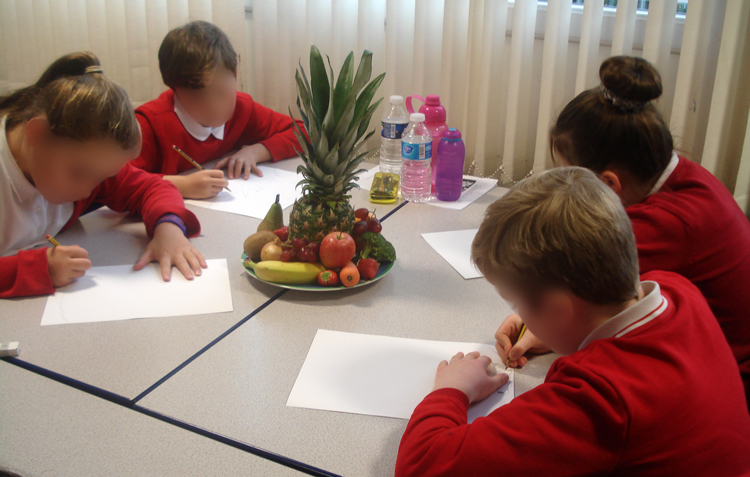 drawing fruit still life